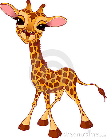 Free Giraffe Calf Royalty Free Stock Image - 13785436