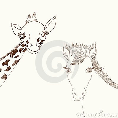Giraffe and horse