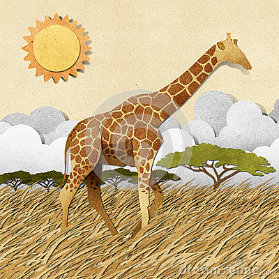 Free Giraffe  In Safari Field Recycled Paper Background Royalty Free Stock Images - 26143069