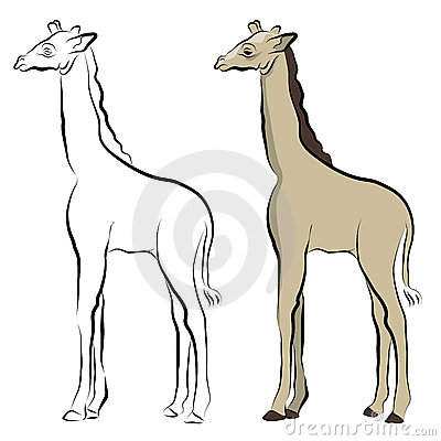 Giraffe Line Drawing