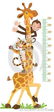 Free Giraffe, Monkey, Tiger. Meter Wall Or Height Chart Stock Photo - 91502580