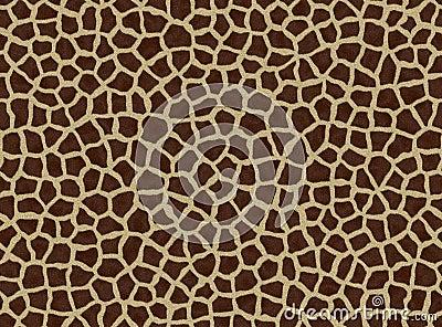 Giraffe spots, giraffe fur