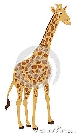 Free Giraffe Standing Alone Royalty Free Stock Image - 37803356