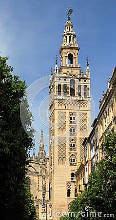Giralda in Seville
