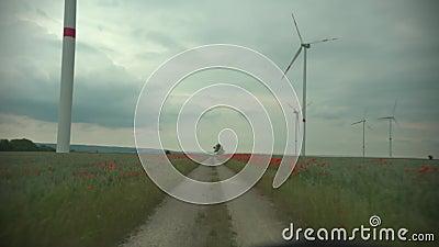 Girandole di tecnologia del parco del vento su un paesaggio del campo di mais di agricoltura con il cielo nuvoloso video d archivio