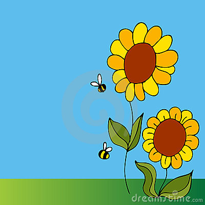Girassol e abelhas