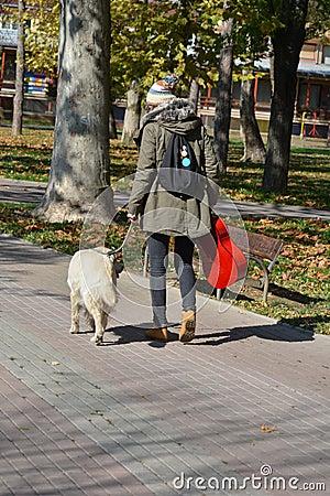 Free Girl And Dog Walking Royalty Free Stock Photos - 62442668