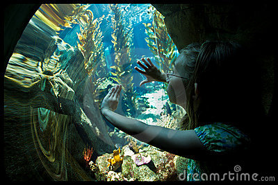 Girl in aquarium