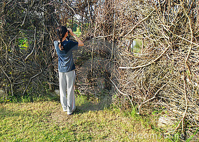 Girl in Birdwatching activity at nature hide