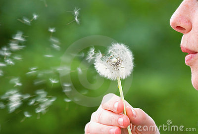 Girl Blowing on Dandelion