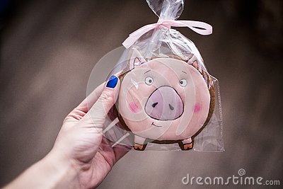 The girl with blue nails holds in hand a symbol of 2019 - a pig. pink gingerbread in the form of a mumps Stock Photo