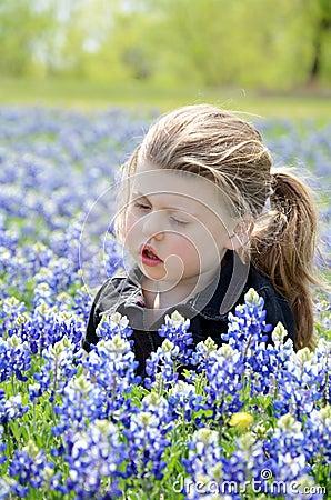 Girl in Bluebonnets