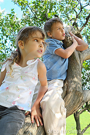 Girl and boy sit on caudex of lilac and look aside