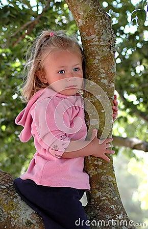 Girl child in tree