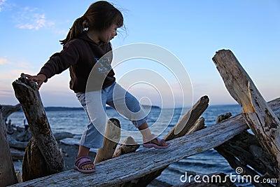 Girl Climbing on Driftwood at Beach