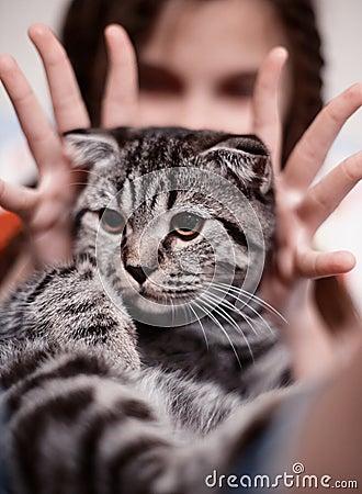 Girl with cute tabby cat