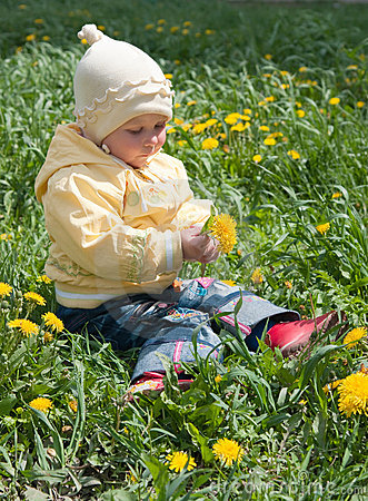 Girl and  dandelions