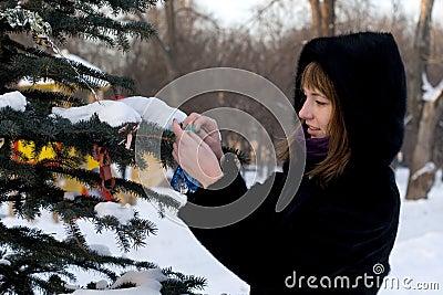 Girl decorating a fir tree