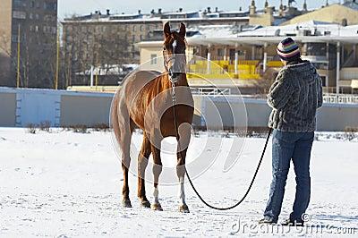 girl end  horse