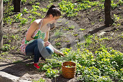 Girl is engaged in grass weeding