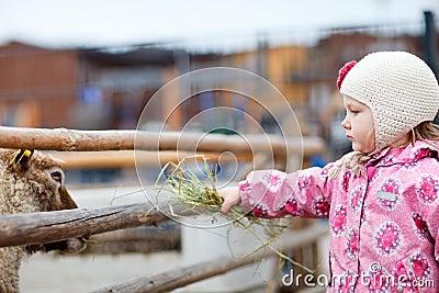 Girl at farm