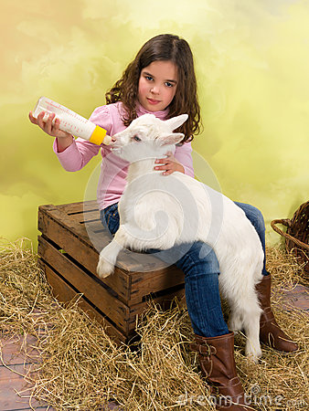 Free Girl Feeding Baby Goat Stock Photography - 48933632