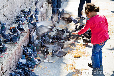 Girl feeds doves near wall of Mosque Editorial Photo