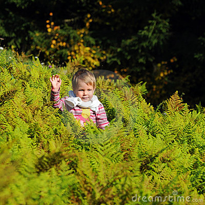 Girl in ferns