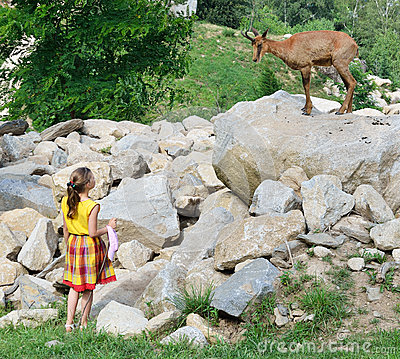 A girl and a goat antelope