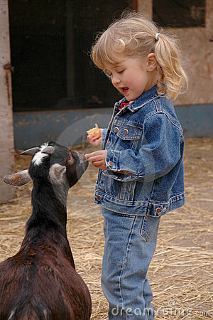 Girl and goats