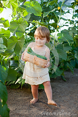 Girl  with harvested cucumber