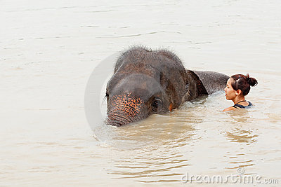 Girl has bath with elephant