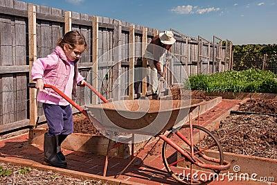 Girl helping grandfather in vegetable garden
