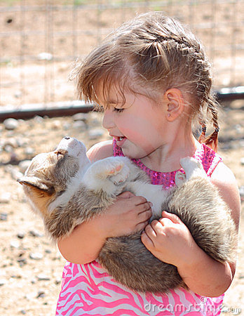 Girl and Her Baby Welsh Corgi