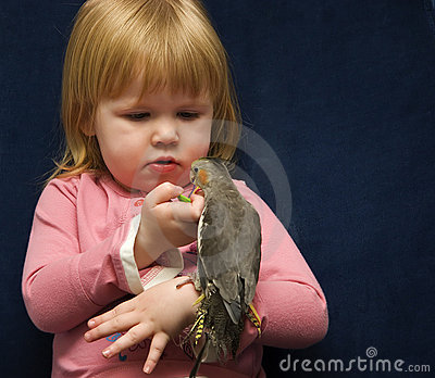 Girl and Her Cockatiel