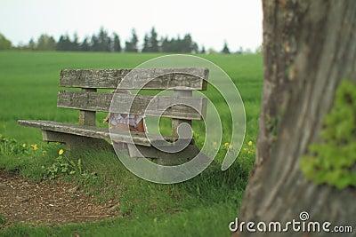 Girl hiding behind a bench