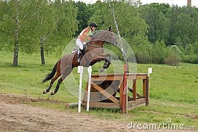 Girl horseback on jumping red chestnut horse Editorial Image