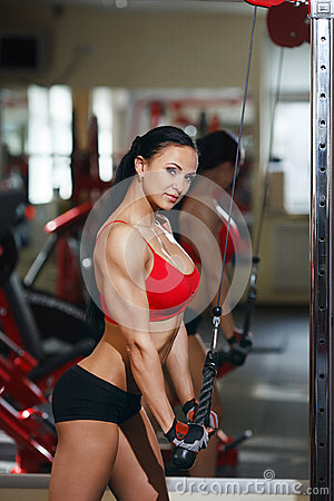 Free Girl In A Gym Doing Triceps Exercises On Block Exerciser Stock Images - 41464604