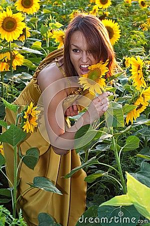 Free Girl In Sunflowers Stock Photo - 11019670