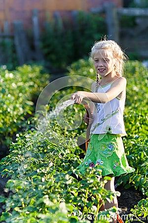 The girl in a kitchen garden