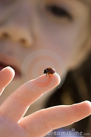 Girl and ladybug