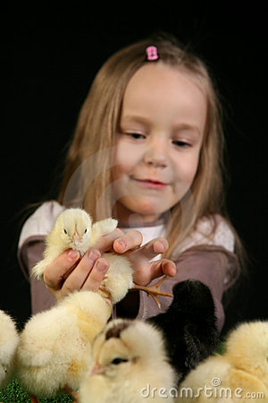Girl and little chickens 1