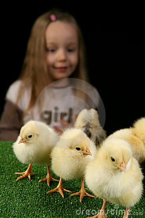 Girl and little chickens 2