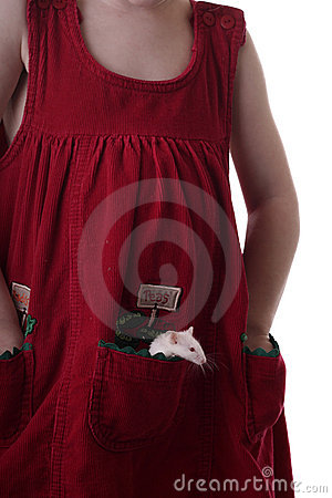 Girl with Mouse in pocket