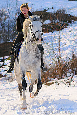 Free Girl On Dressage Horse In Winter Stock Images - 13070384