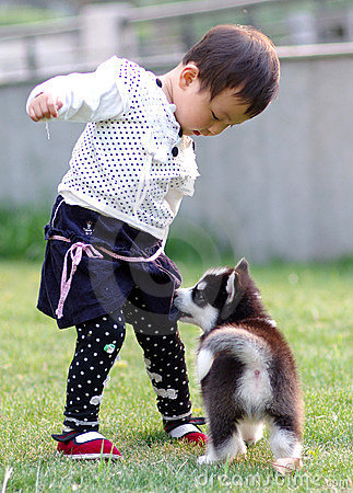 Girl play with dog