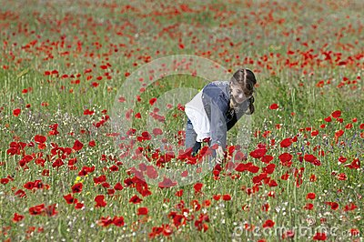 Girl with poppies collecting