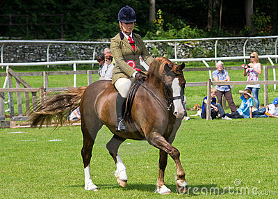 Girl riding horse at Cartmel Show 2011 Editorial Photo