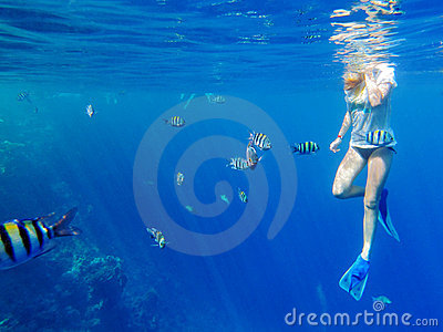 Girl snorkeling among fishes