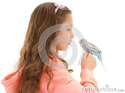 Girl speaking to tame pet bird budgerigar